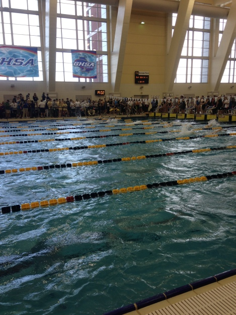 Nine North Springs swimmers competed at state