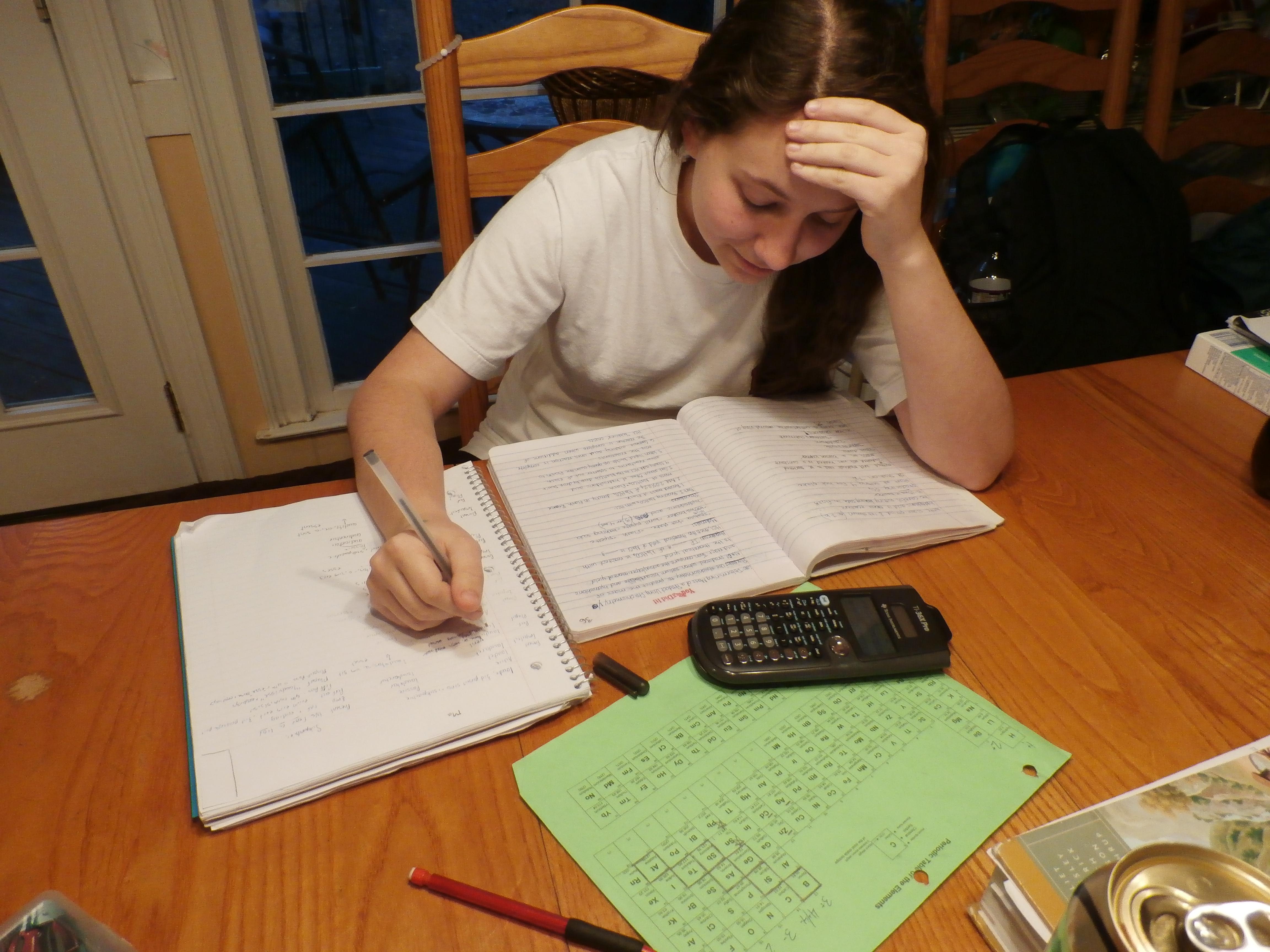 Mixed views in school homework debate   Bundaberg NewsMail